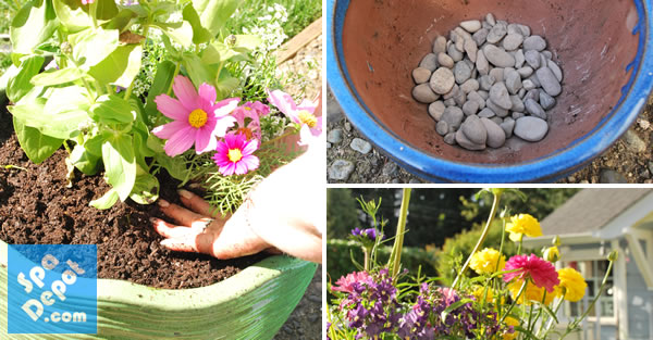 Planting tips