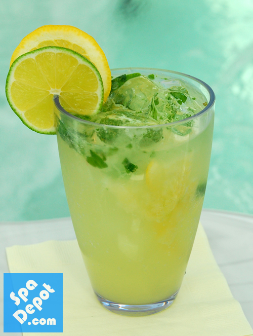 Fresh Mint Margaritas 2