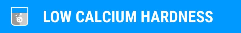 Foam-Blog-Low-Calcium