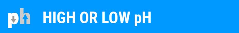 Foam-Blog-pH