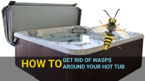 how to get rid of wasps around your hot tub