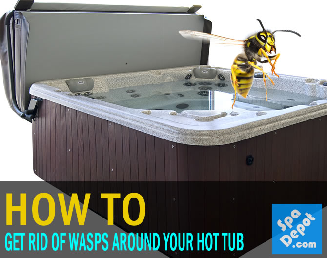 Wasps In Hot Tub