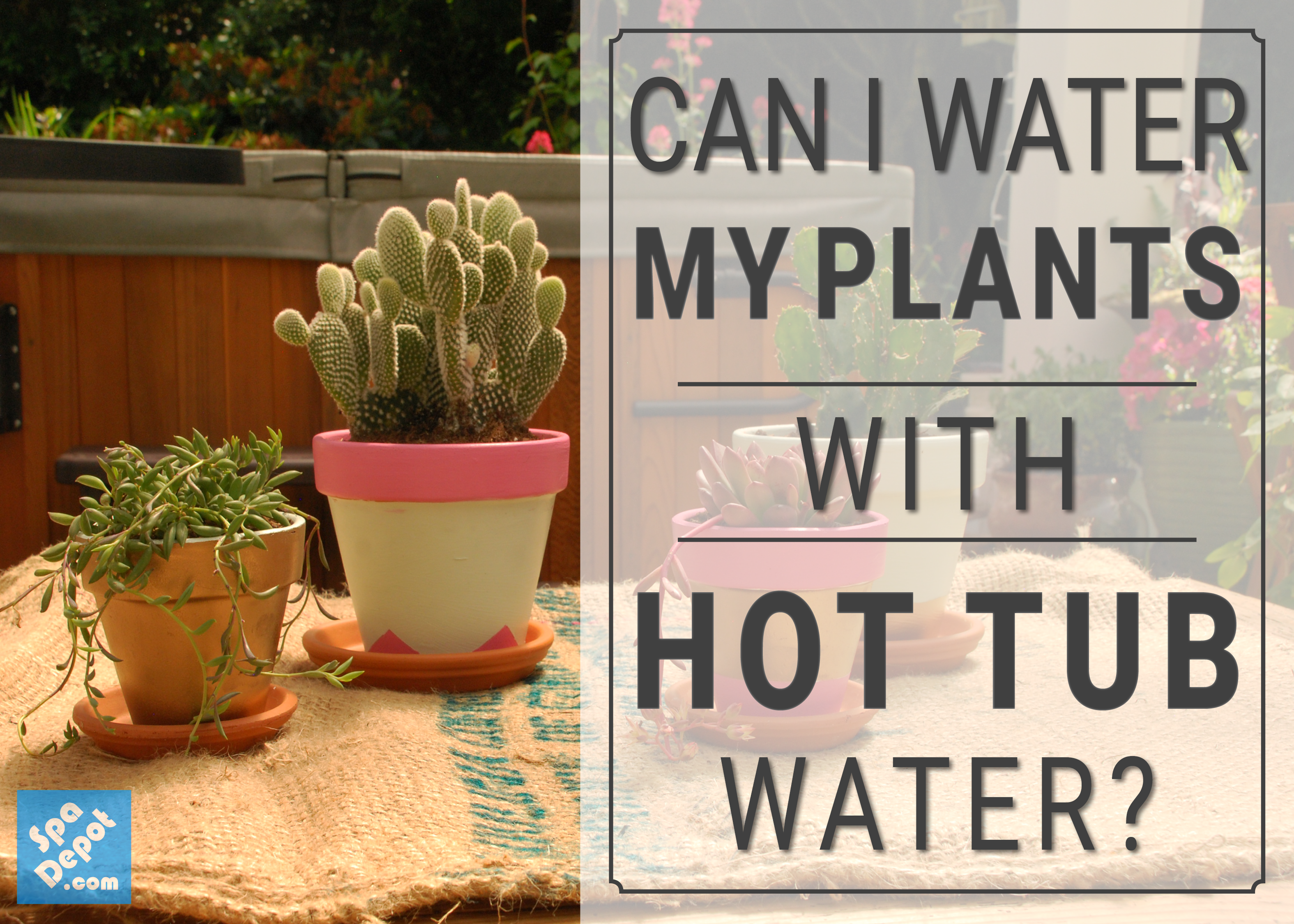 Can I water my plants with Hot Tub Water?