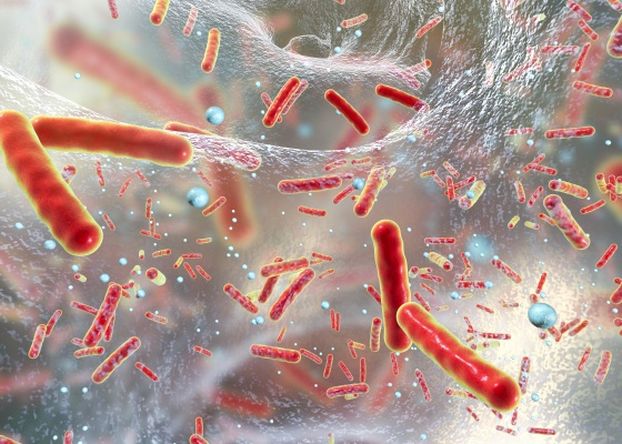 Bacteria inside bio-film illustration
