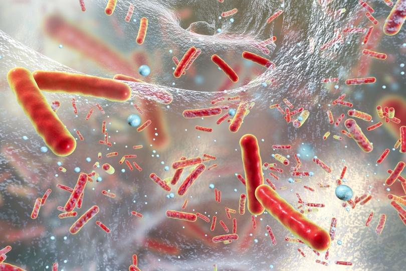 Bacteria inside bio-film illustration