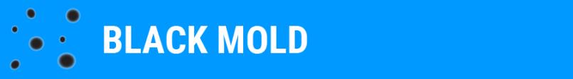 SpaDepot.com-Mold-Blog-Black-Mold