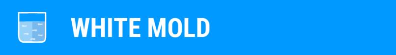 SpaDepot.com-Mold-Blog-White-Mold